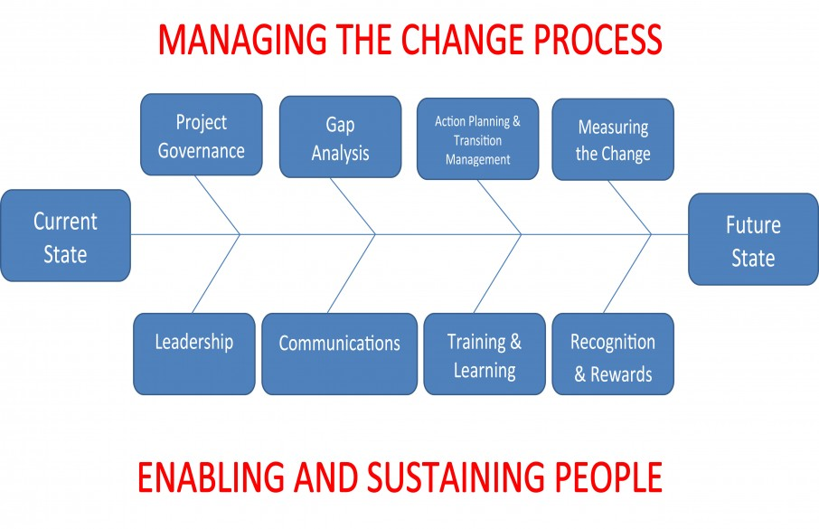 Strategic Management, Leadership and Organisational Change in Healthcare